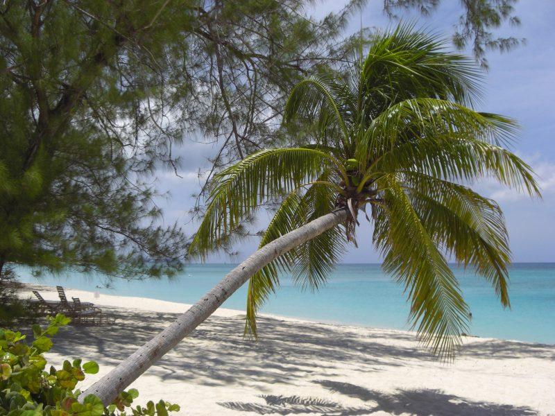 Playa de las Siete Millas en las Islas Caimán, ranking tripadvisor playas, mejores playas del mundo 2019, las 10 mejores playas del mundo segun tripadvisor