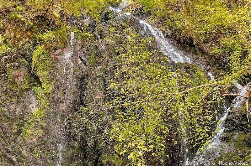 La Cascada da Salgueira